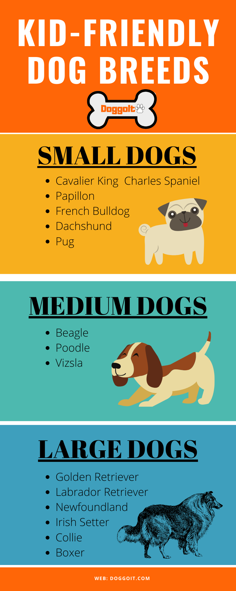 Best kid friendly dog breeds by size