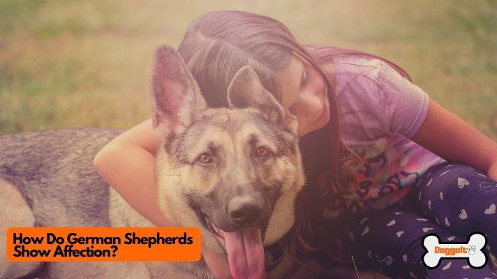 How Do German Shepherds Show Affection