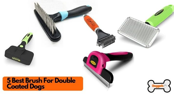 Best brush for double coat dogs