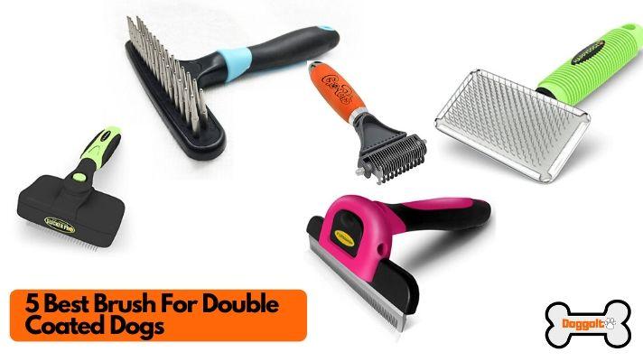 Best brush for double coat dogs