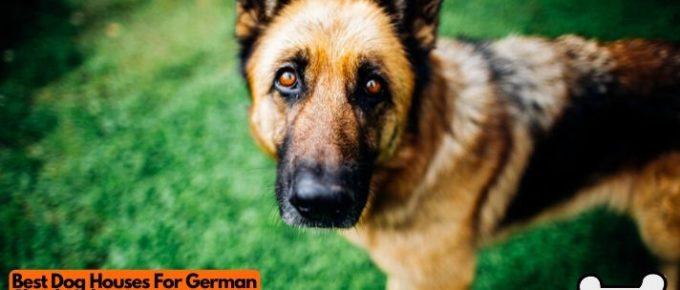 Best dog houses for german shepherds
