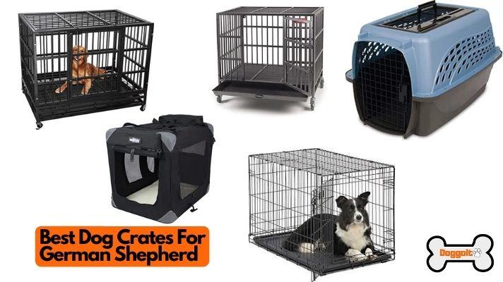 Best dog crates for German Shepherd